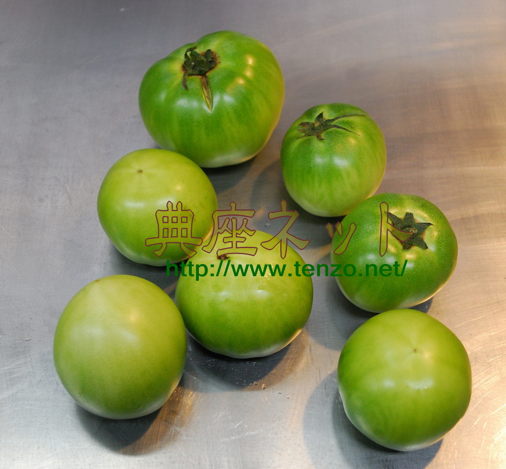 青トマトの塩漬け