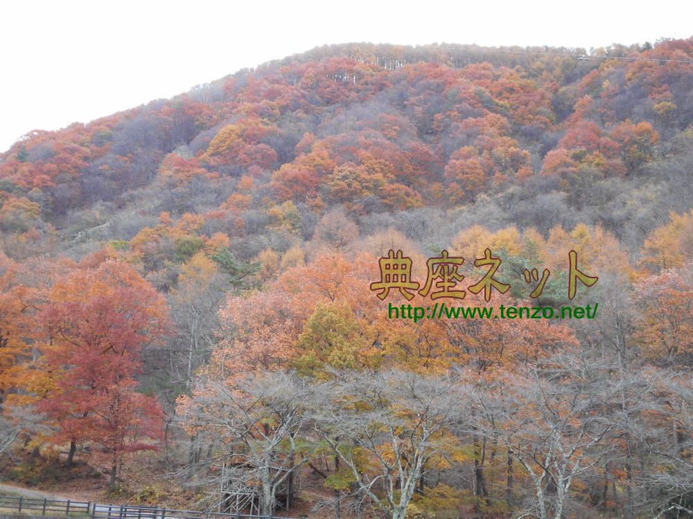 吹割の滝周辺紅葉情報H27